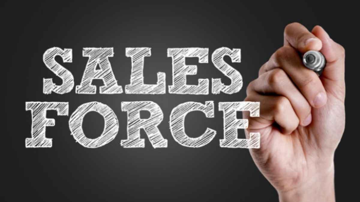 Ways to Diversify Your Salesforce